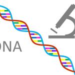 Odżywianie a genetyka